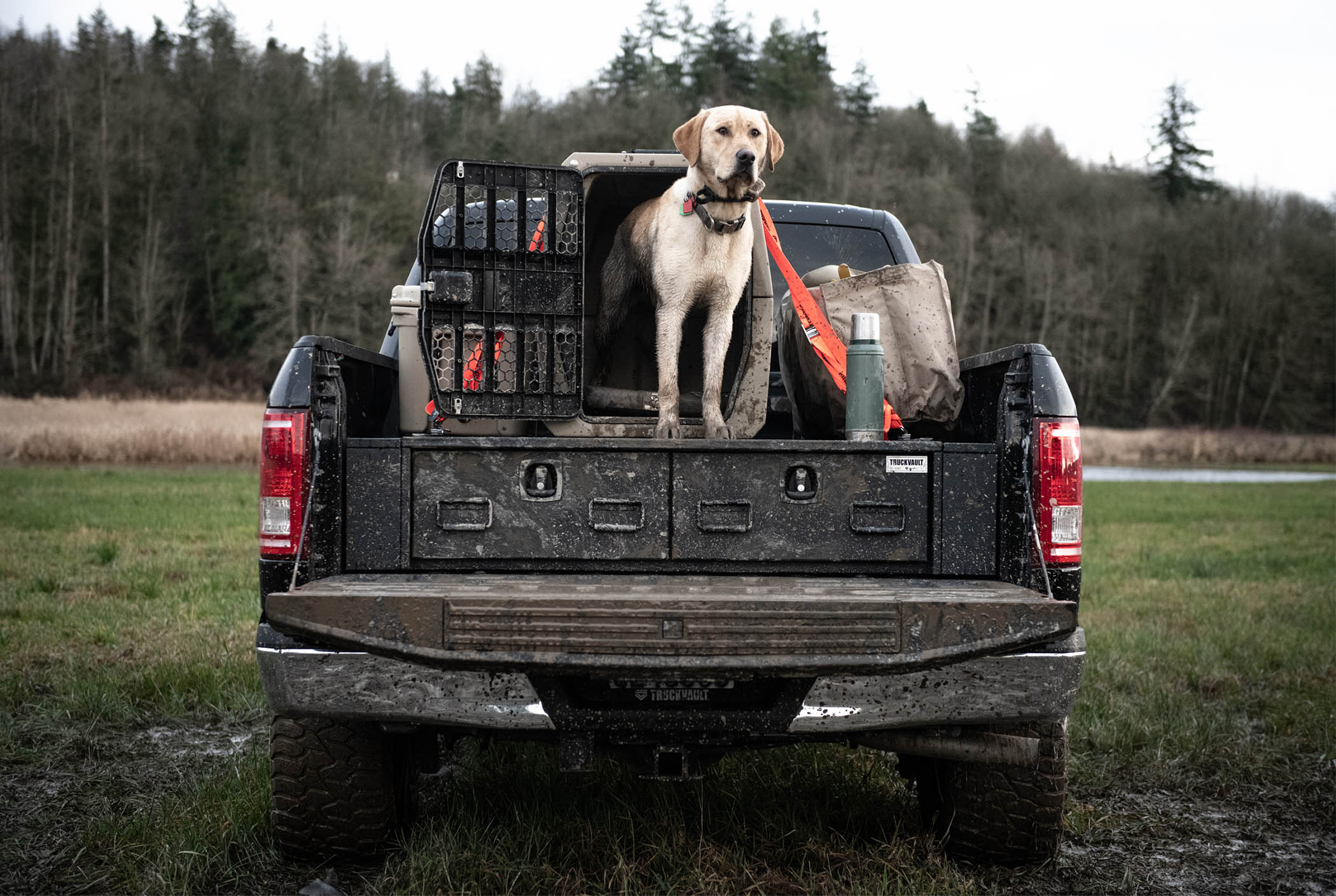 A hunting dog on top of a muddy all-weather TruckVault system for storing guns.