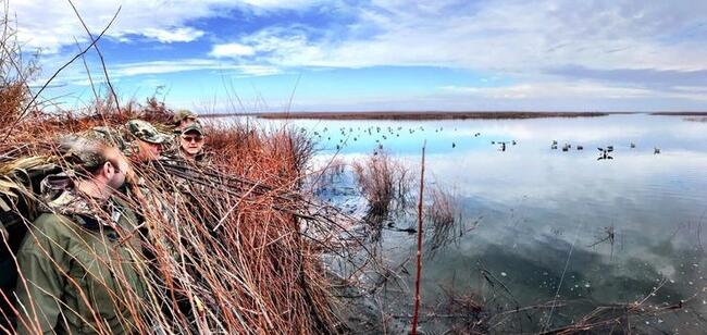 Three hunters looking out at the water while on a waterfowl hunt.